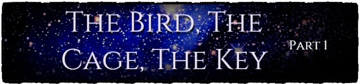 The Bird, The Cage, The Key – PartOne