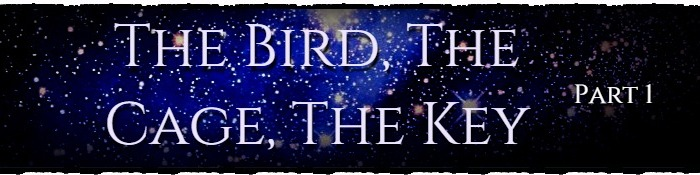 The Bird, The Cage, The Key – Part One